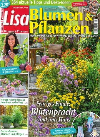 geschenkabo lisa blumen pflanzen beim deutsche post shop. Black Bedroom Furniture Sets. Home Design Ideas
